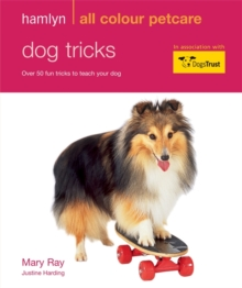 Dog Tricks : Hamlyn All Colour Pet Care, Paperback Book