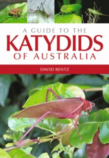 A Guide to the Katydids of Australia, Paperback / softback Book