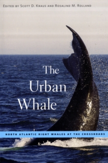 The Urban Whale : North Atlantic Right Whales at the Crossroads, Paperback / softback Book