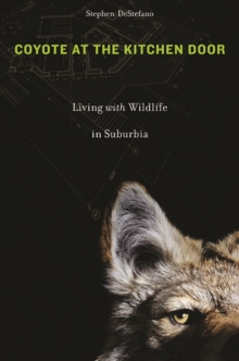 Coyote at the Kitchen Door : Living with Wildlife in Suburbia, Paperback / softback Book