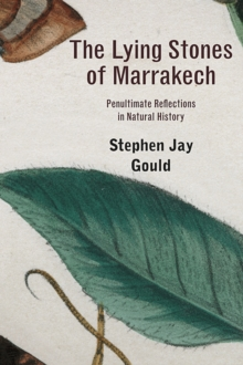 The Lying Stones of Marrakech : Penultimate Reflections in Natural History, Paperback Book