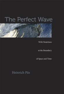 The Perfect Wave : With Neutrinos at the Boundary of Space and Time, Hardback Book