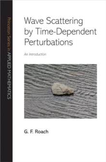 Wave Scattering by Time-Dependent Perturbations : An Introduction, Hardback Book