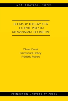 Blow-up Theory for Elliptic PDEs in Riemannian Geometry (MN-45), Paperback / softback Book