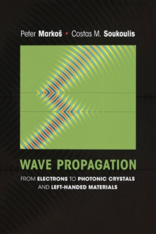 Wave Propagation : From Electrons to Photonic Crystals and Left-Handed Materials, Hardback Book