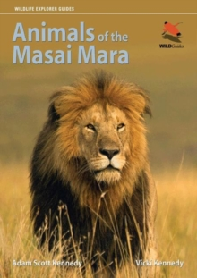 Animals of the Masai Mara, Paperback / softback Book