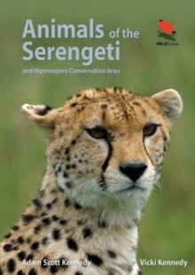 Animals of the Serengeti : And Ngorongoro Conservation Area, Paperback / softback Book