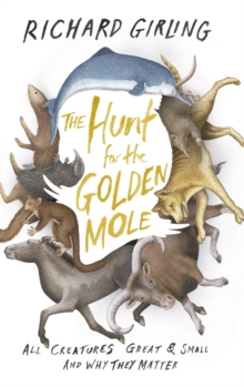 The Hunt for the Golden Mole : All Creatures Great and Small, and Why They Matter, Hardback Book