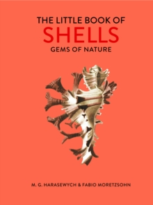 The Little Book of Shells : Gems of Nature, Hardback Book