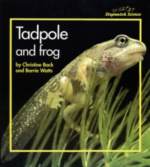Stopwatch Big Book: Tadpole and Frog, Paperback Book