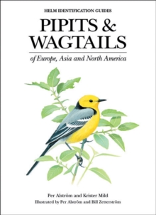 Pipits and Wagtails of Europe, Asia and North America : Identification and Systematics, Hardback Book