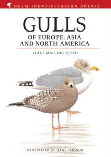 Gulls of Europe, Asia and North America, Hardback Book