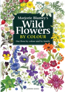 Wild Flowers by Colour : The Easy Way to Flower Identification, Paperback Book