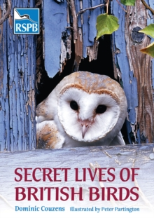 Secret Lives of British Birds, Paperback Book