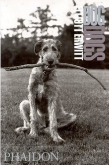 DogDogs, Paperback Book