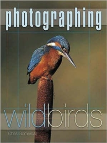 Photographing Wild Birds, Paperback Book
