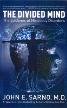 The Divided Mind : The Epidemic of Mindbody Disorders, Paperback Book