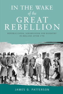 In the Wake of the Great Rebellion : Republicanism, Agrarianism and Banditry in Ireland After 1798, Paperback / softback Book