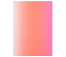 A5 Neon Pink, Notebook / blank book Book