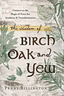 The Wisdom of Birch, Oak, and Yew : Connect to the Magic of Trees for Guidance and Transformation, Paperback Book