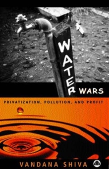 Water Wars : Pollution, Profits and Privatization, Paperback Book