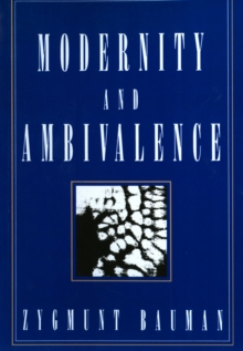 Modernity and Ambivalence, Paperback Book