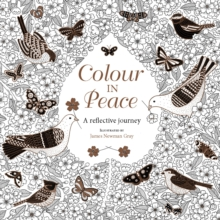 Colour in Peace : A reflective journey, Paperback / softback Book