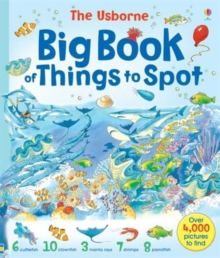 Big Book of Things to Spot, Paperback Book