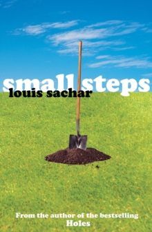 Small Steps, Paperback Book