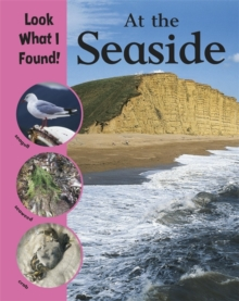 Look What I Found!: At The Seaside, Paperback Book