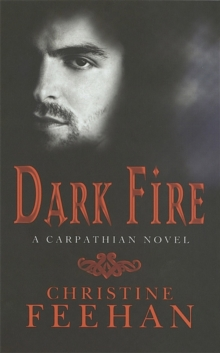 Dark Fire : Number 6 in series, Paperback Book
