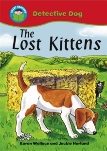 The Lost Kittens, Paperback Book