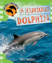 Animal Instincts: A Curious Dolphin, Paperback Book