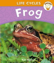 Popcorn: Life Cycles: Frog, Paperback Book
