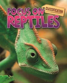 Classification: Focus on: Reptiles, Paperback / softback Book