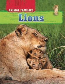 Animal Families: Lions, Hardback Book