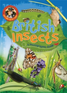 Nature Detective: British Insects, Paperback / softback Book
