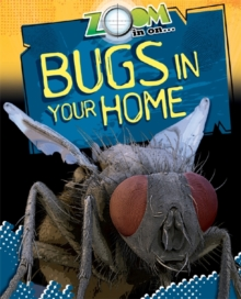 Zoom in On: Bugs in your Home, Paperback / softback Book