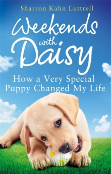 Weekends with Daisy : How a Very Special Puppy Changed My Life, Paperback Book