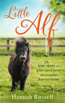 Little Alf : The true story of a pint-sized pony who found his forever home, Paperback Book