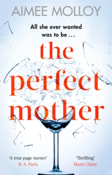 The Perfect Mother : A gripping thriller with a nail-biting twist, Paperback / softback Book