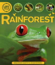 Life Cycles: Rainforest, Paperback Book