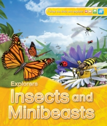 Explorers: Insects and Minibeasts, Paperback / softback Book