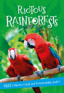 It's All About... Riotous Rainforests, Paperback Book