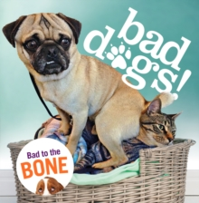 Bad Dogs, Hardback Book