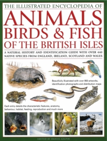 Illustrated Encyclopedia of Animals, Birds and Fish of the British Isles, Hardback Book