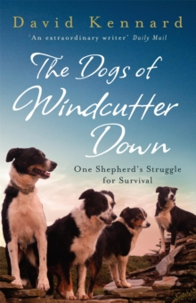 The Dogs of Windcutter Down, Paperback / softback Book