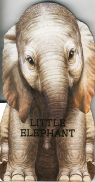 Little Elephant : Look at Me, Board book Book