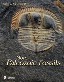 More Paleozoic Fossils, Paperback Book