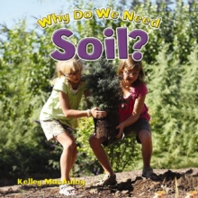 Why Do We Need Soil?, Paperback / softback Book